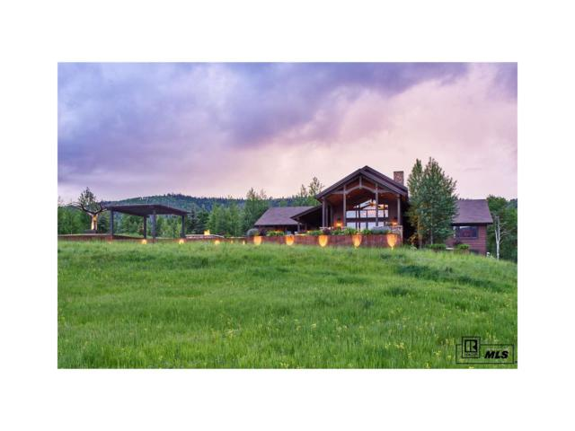 31640 Aspen Ridge Road, Steamboat Springs, CO 80487 (#S170822) :: The Pete Cook Home Group