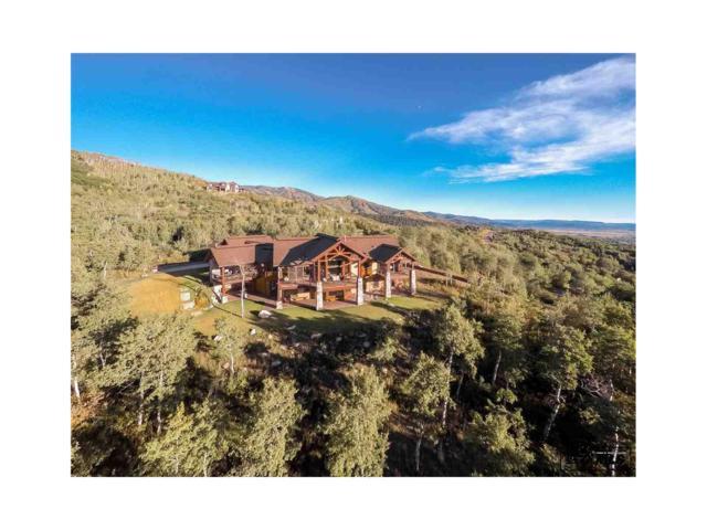 175 Deer Clover Lane, Steamboat Springs, CO 80487 (#S170858) :: The Peak Properties Group