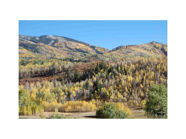 2700 County Road 32, Steamboat Springs, CO 80487 (#S170869) :: My Home Team