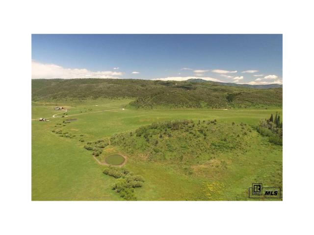 0 Rcr 43, Steamboat Springs, CO 80487 (#S171176) :: The DeGrood Team