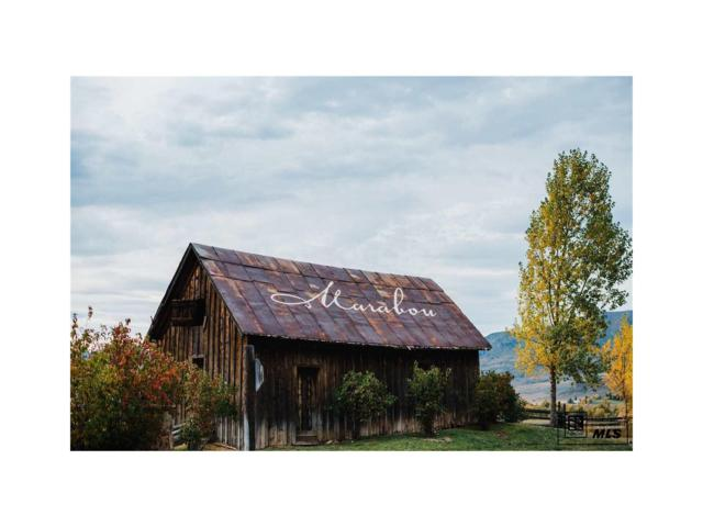 27255 Cowboy Up Road, Steamboat Springs, CO 80487 (#S171307) :: The DeGrood Team