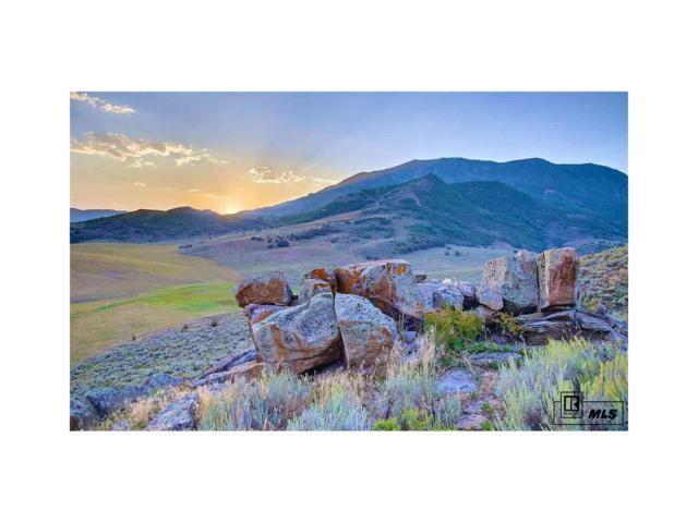 25550 Prairie Pl. Lot 6, Steamboat Springs, CO 80487 (MLS #S171633) :: 8z Real Estate