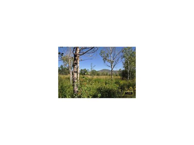 22865 Broken Talon Way, Oak Creek, CO 80467 (#S171680) :: The HomeSmiths Team - Keller Williams
