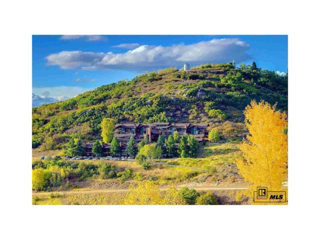 31500 Runaway Pl., #409, Steamboat Springs, CO 80487 (#S171733) :: The Peak Properties Group