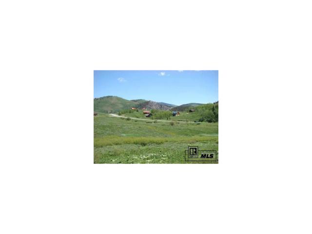 26990 Beaver Canyon Drive, Clark, CO 80428 (MLS #S171859) :: 8z Real Estate