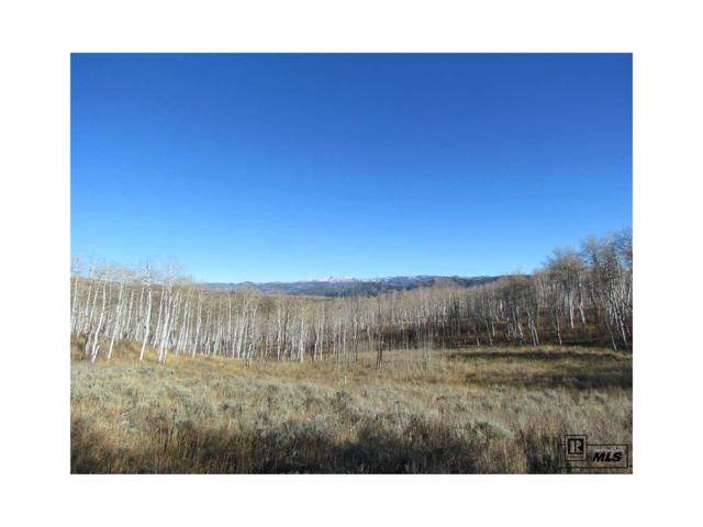 56005 Hannahs Way, Clark, CO 80428 (MLS #S171888) :: 8z Real Estate