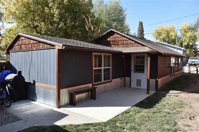 456 E Washington Avenue, Hayden, CO 81639 (#1500968) :: The Scott Futa Home Team