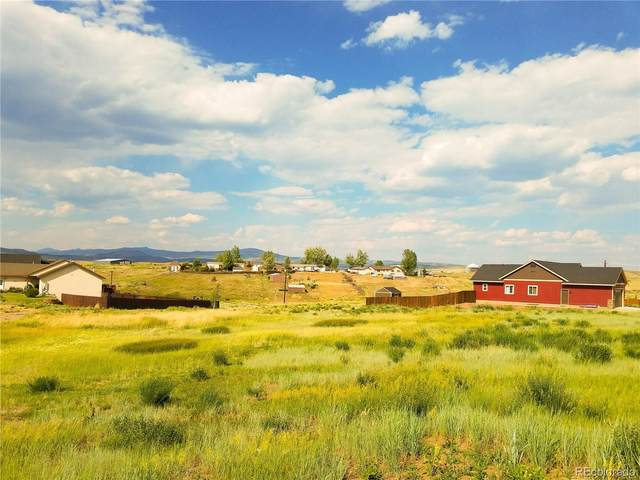 338 Lake View Road, Hayden, CO 81639 (MLS #1524624) :: Bliss Realty Group