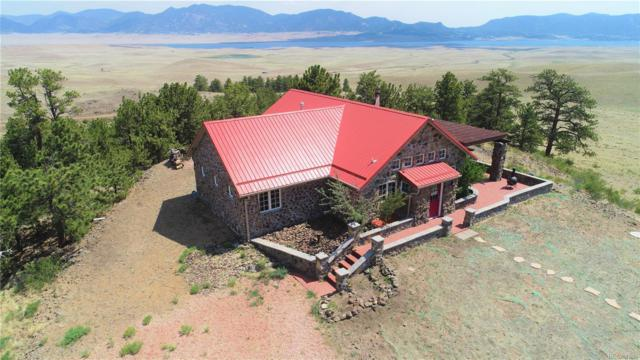 5798 Black Mountain Road, Lake George, CO 80827 (#1548561) :: Wisdom Real Estate
