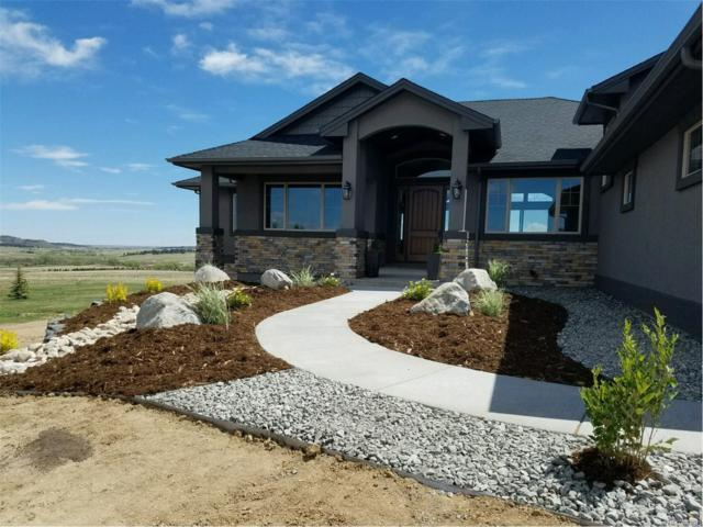 20415 Hunting Downs Way, Monument, CO 80132 (MLS #1554596) :: 8z Real Estate