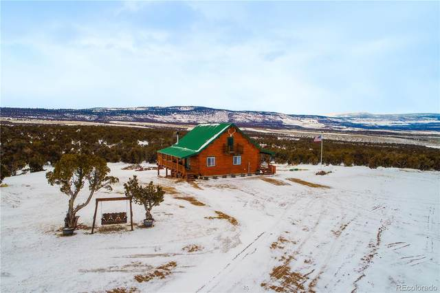9000 County Road 10, Maybell, CO 81640 (#1558282) :: Colorado Home Finder Realty