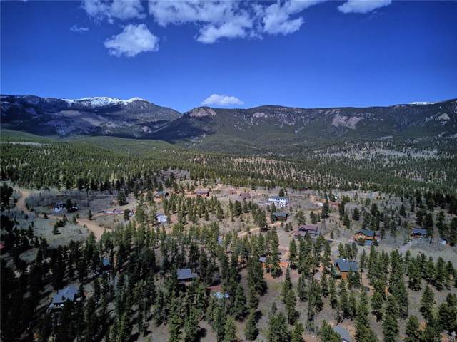 127 Baker Road, Bailey, CO 80421 (MLS #1563265) :: 8z Real Estate