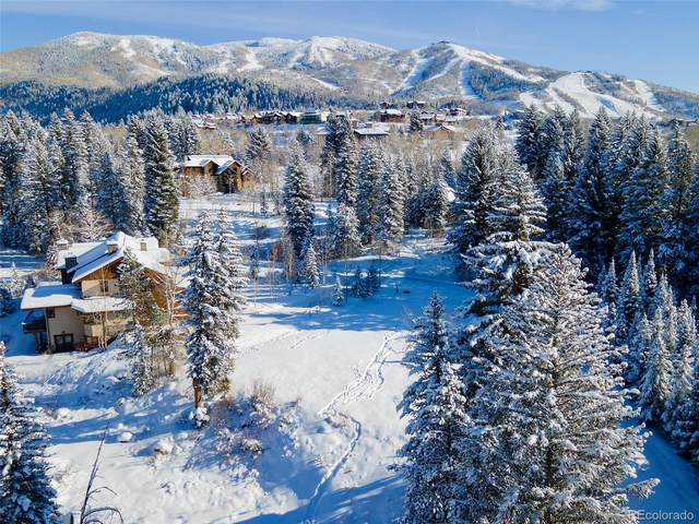 1080 Graystone Court, Steamboat Springs, CO 80487 (#1569239) :: The Colorado Foothills Team | Berkshire Hathaway Elevated Living Real Estate