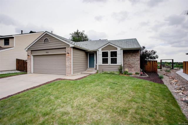 9063 W Quarto Avenue, Littleton, CO 80128 (#1600608) :: The Pete Cook Home Group