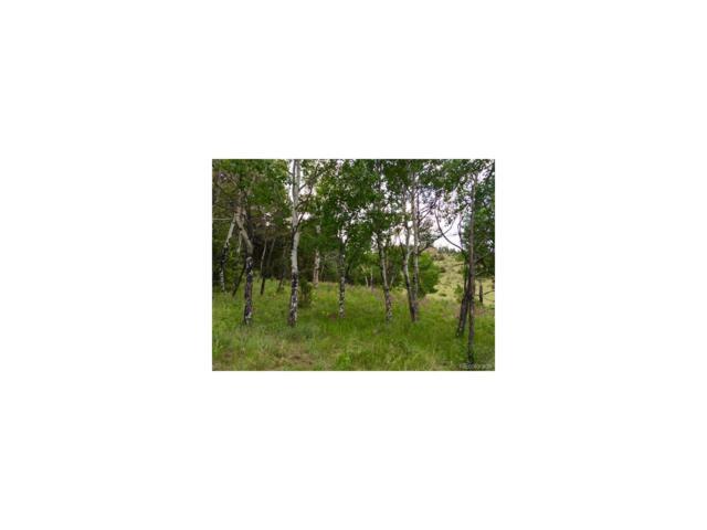 14745 Wetterhorn Peak Trail, Pine, CO 80470 (MLS #1601766) :: 8z Real Estate