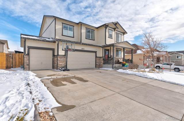 13022 Tamarac Place, Thornton, CO 80602 (#1625736) :: The Dixon Group