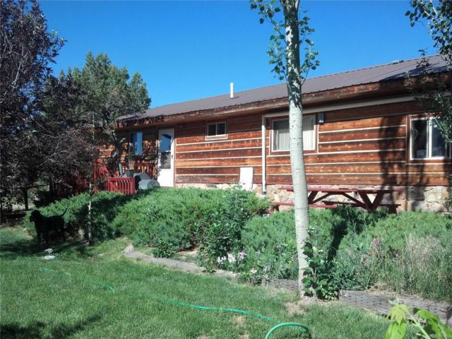 33733 County Road 373A, Buena Vista, CO 81211 (MLS #1626701) :: 8z Real Estate