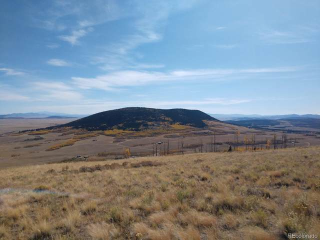 Black Mountain Ranch Road, Fairplay, CO 80440 (MLS #1634404) :: Keller Williams Realty