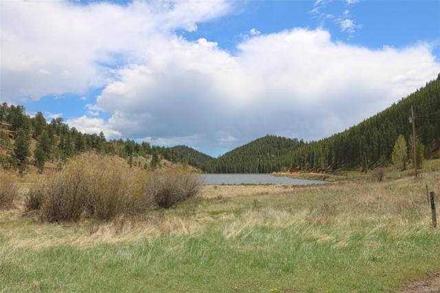 707 Lakeview Road, Bailey, CO 80421 (#1637693) :: The Heyl Group at Keller Williams