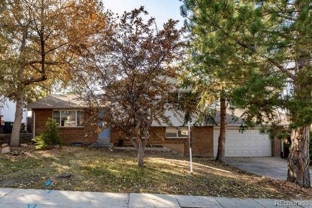 106 Elm Avenue, Castle Rock, CO 80104 (#1675650) :: Wisdom Real Estate