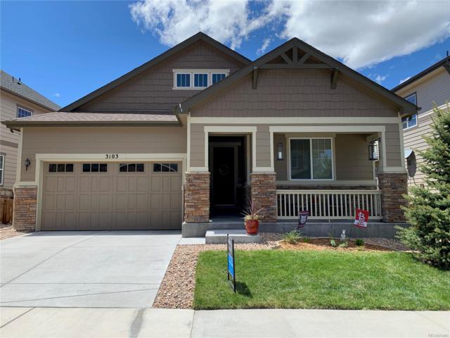 3103 Riverwood Way, Castle Rock, CO 80109 (#1729491) :: The HomeSmiths Team - Keller Williams