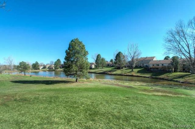 4610 W Pondview Drive, Littleton, CO 80123 (#1738157) :: The City and Mountains Group