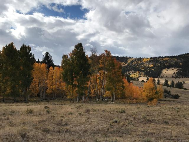 47 Lobo Place, Cotopaxi, CO 81223 (#1744963) :: The Heyl Group at Keller Williams