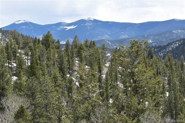 Hamlin Gulch Road, Idaho Springs, CO 80452 (MLS #1758885) :: 8z Real Estate