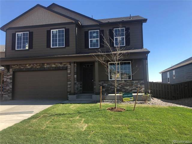 166 Haymaker Lane, Severance, CO 80550 (MLS #1770645) :: 8z Real Estate