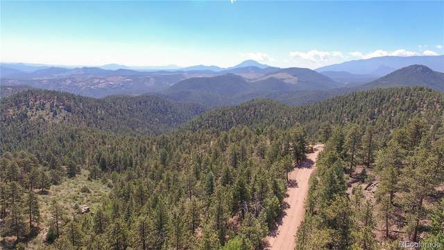 266 Ptarmigan Trail, Bailey, CO 80421 (#1788469) :: Re/Max Structure