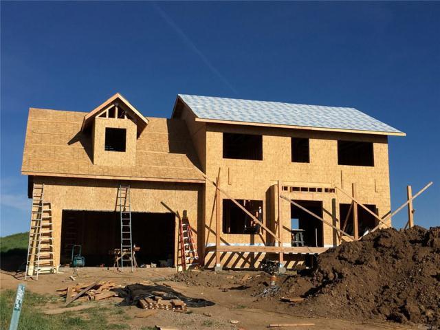 368 Lake View Road, Hayden, CO 81639 (MLS #1808289) :: Kittle Real Estate