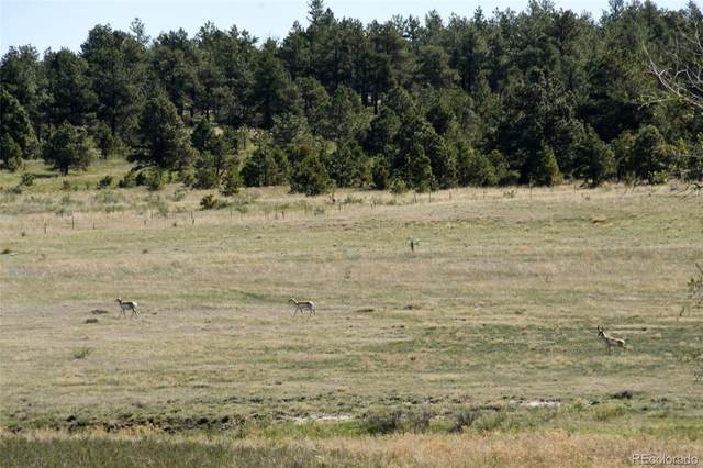 24752 County Road 73, Calhan, CO 80808 (MLS #1810983) :: 8z Real Estate
