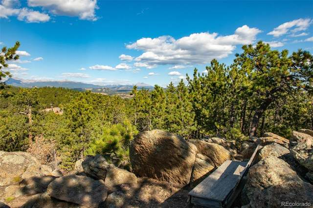 93 Gross Dam Road, Golden, CO 80403 (#1842310) :: The Dixon Group