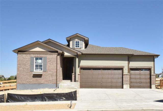 7266 S Robertsdale Way, Aurora, CO 80016 (#1849555) :: The Tamborra Team