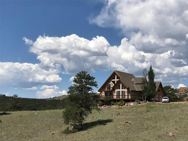 501 Creekside View, Florissant, CO 80816 (MLS #1856887) :: 8z Real Estate