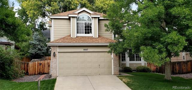 5667 W 116th Place, Westminster, CO 80020 (#1865102) :: The DeGrood Team