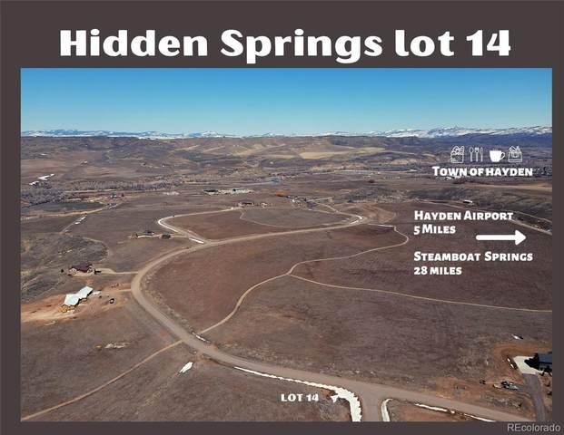 38365 Cattails Court, Hayden, CO 81639 (#1866851) :: The DeGrood Team