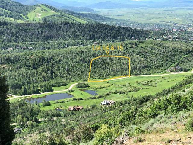 2865 Littlefish Trail, Steamboat Springs, CO 80487 (#1874091) :: The DeGrood Team