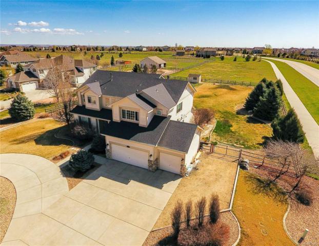 8799 Longs Peak Circle, Windsor, CO 80550 (#1894214) :: Wisdom Real Estate