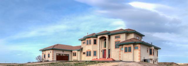 14230 Watkins Road, Brighton, CO 80603 (#1901928) :: Wisdom Real Estate