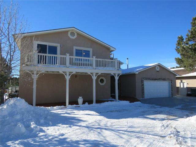 31390 County Road 384B, Buena Vista, CO 81211 (MLS #1902377) :: Bliss Realty Group