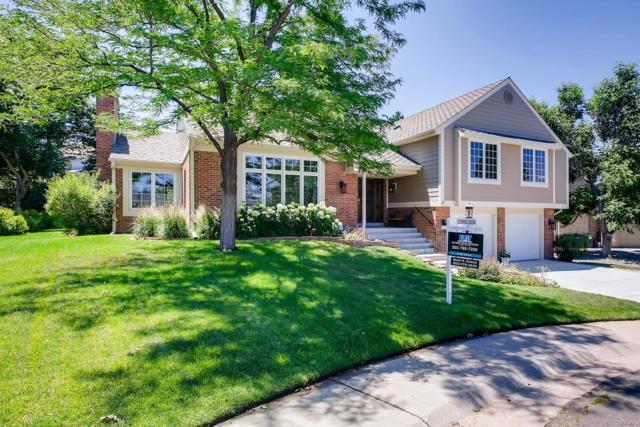 6956 E Nichols Avenue, Centennial, CO 80112 (MLS #1911299) :: 8z Real Estate