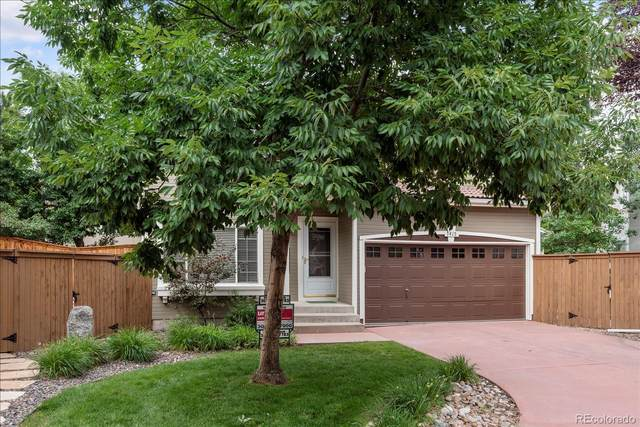 1415 Braewood Avenue, Highlands Ranch, CO 80129 (#1944183) :: The Gilbert Group