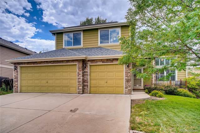 7627 Halleys Drive, Littleton, CO 80125 (MLS #1979351) :: Clare Day with Keller Williams Advantage Realty LLC