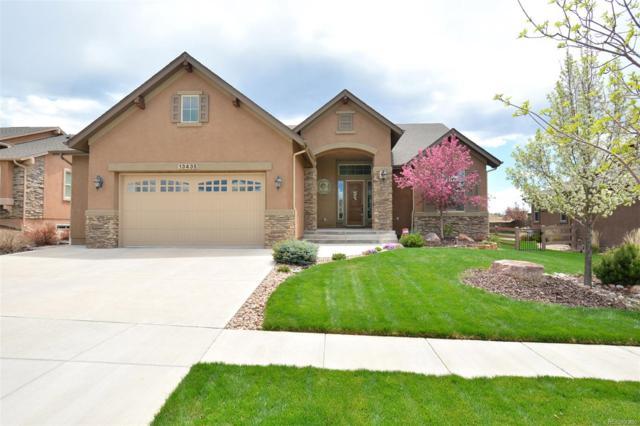 13435 Cedarville Way, Colorado Springs, CO 80921 (#2024166) :: The Dixon Group