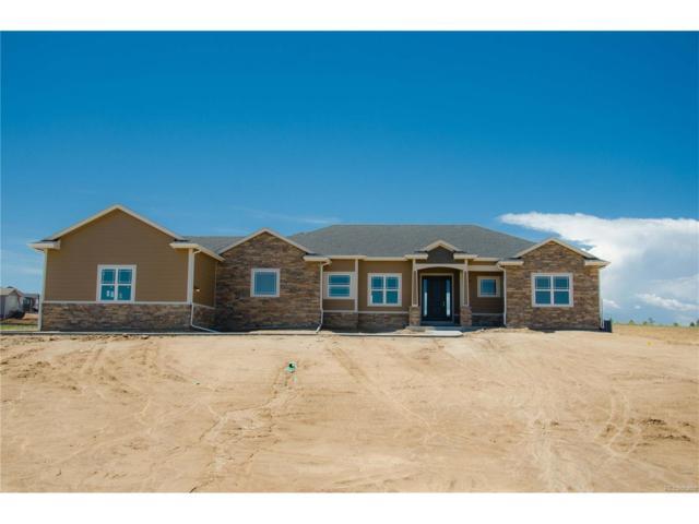 9610 Merryvale Court, Parker, CO 80138 (MLS #2037371) :: 8z Real Estate