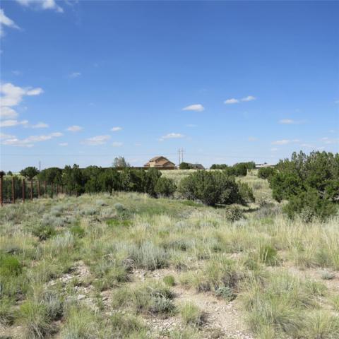 379 E Dee Jay Court, Pueblo West, CO 81007 (#2042919) :: The Pete Cook Home Group
