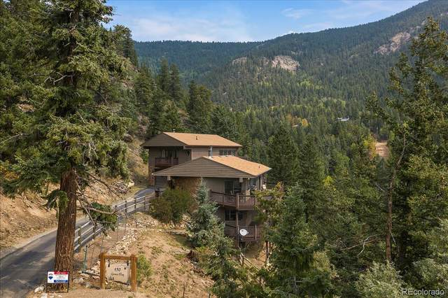 150 Grouse Way, Evergreen, CO 80439 (#2048398) :: Mile High Luxury Real Estate