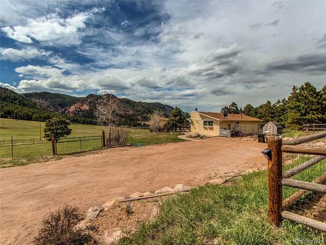 14538 S Perry Park Road, Larkspur, CO 80118 (MLS #2064891) :: 8z Real Estate