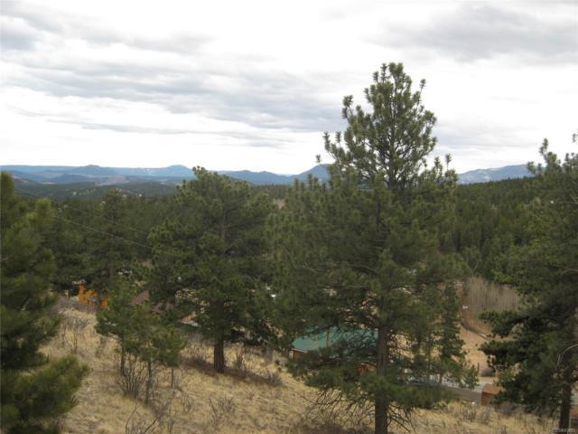 288 N Ridge Road, Bailey, CO 80421 (#2071516) :: The Peak Properties Group